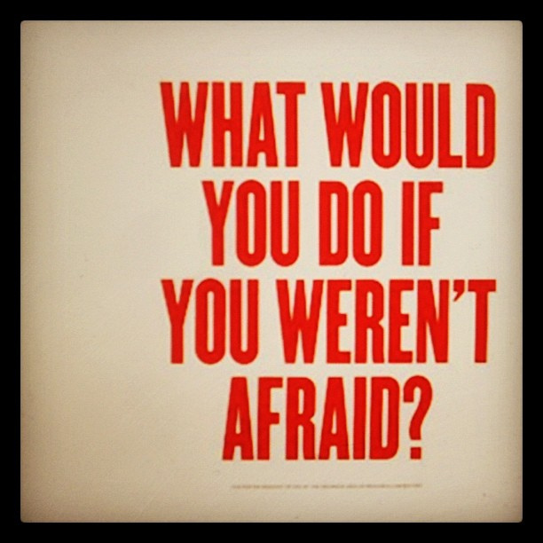 What would you do if you were not afraid